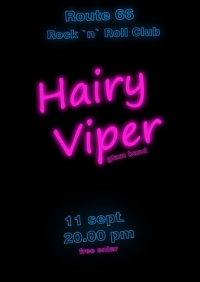 Hairy Viper's Party